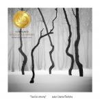 Tančící stromy  autor Daniel Řeřicha-1.jpg